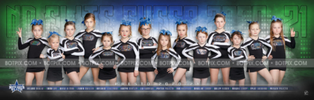 ND Elite Cheer